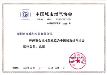 中国城市亚博平台APP协会证书